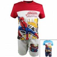 Junto Spiderman 2 habitaciones de 2 a 8 años