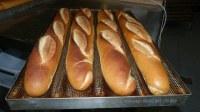 Exportación de harina de trigo (investigación de clientes)