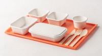 Sugarcane Tableware