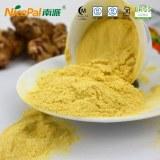 Vegetable powder ginger powder for beverage juice and drinks tea coffee