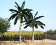 Products Artificial Plant and Trees