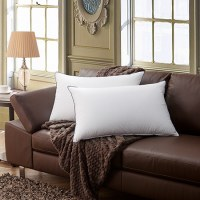 Classic Modern Fabric Hot Sell Printed OEM Cheap Price Throw Latex Pillow Decorative Co...