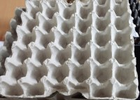 Machines plateau oeufs - ligne de fabrication
