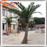 Best selling China supplier artificial roystonea regia tree ,fiberglass pipe inside tru...