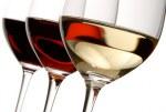 Vinos / alcoholes
