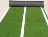 25mm Gym Artificial Grass