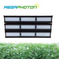 Megaphoton 450W top LED crece la luz para horticultura y floricultura en proyectos de...
