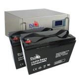 Dongjin LiFePO4 Battery