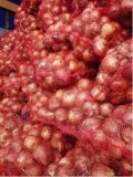 Onions By Wholesale - For Processing Or Peeling