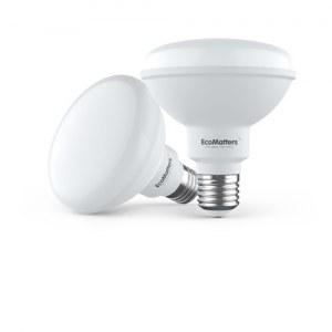 PAR30 Reflector LED Lamp