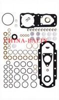Pump repair kit 800859