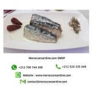 Authentic Moroccan sardines