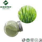 Organic Barley Grass Juice Vegetable Powder