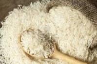 El arroz de Tailandia perfumado de jazmín blanco