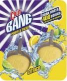 Cillit Bang Galet WC Lot de 2 Puissance & Fraîcheur Citron