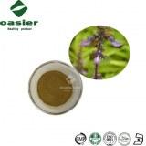 Root Extract Coleus Forskohlii Extract Forskolin, Forskohlii Extract