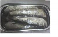 Conserva de anchoveta en aceite vegetal en envase de ¼ club