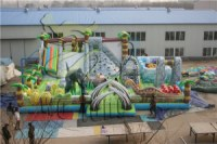HI inflatable slide/inflatable slide for pool/inflatable double lane slip slide