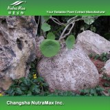 Epigeal Srephaia Root Extract (sales07@nutra-max.com)