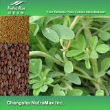 Fenugreek Extract (sales07@nutra-max.com)