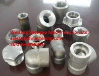 Professional Forged Foundry Metal Forging from China