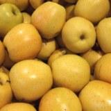 Vends pommes Golden,Granny,Royal gala