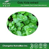 Gotu Kola extract (sales07@nutra-max.com)