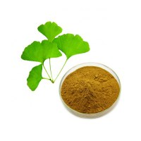 24% flavonoides 6% lactonas polvo de extracto de hoja de ginkgo biloba