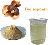 Polvo de la semilla de la camelia del polvo de la saponina del té