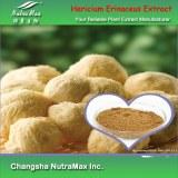 Hericium Erinaceus Powder (sales07@nutra-max.com)