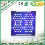 Blue light indoor grow led lightings