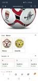 Ballon football professionel