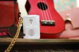 Altavoz de grabación activa de movimiento del sensor PIR