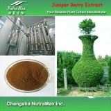 100% natural Juniper Berry extract 4:1 (sales07@nutra-max.com)