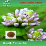 100% Natural Knotweed Herb Extract 8:1 (sales07@nutra-max.com)