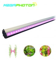 Interlighting IP66 impermeable 150W LED crece la luz para hidroponía invernadero hortíc...