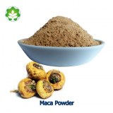 High quality maca plant extract herbal supplements