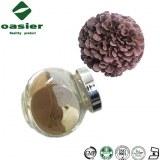 Natural Plant Extract Maitake Mushroom Powder
