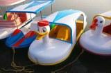 Multi Person Pedal Boat