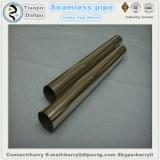 Junta de cachorro 3 pies de largo P110 3cr Material Tubing