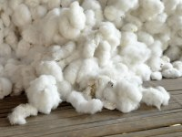 Algodón crudo natural para la venta
