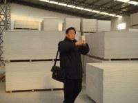 Yeso incombustible servidumbre madera tableros de partículas