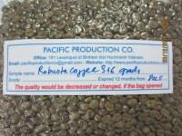 Robusta Coffee S16