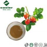 Plant Extract Rosehip Extract Powder Rosehip Polyphenols