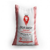 Biscuit Wheat Flour / Salva Bakery Brand / For All Bakery types
