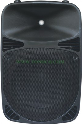 THE 12/15 BU Series Active Sound Box with 2 MIC INPUT in It