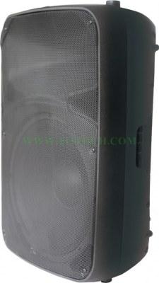 THR 12/15 DUI Series Active Sound Box with Class D Bi-Amplifier