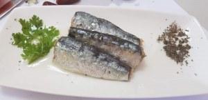 Moroccan Sardines producers,